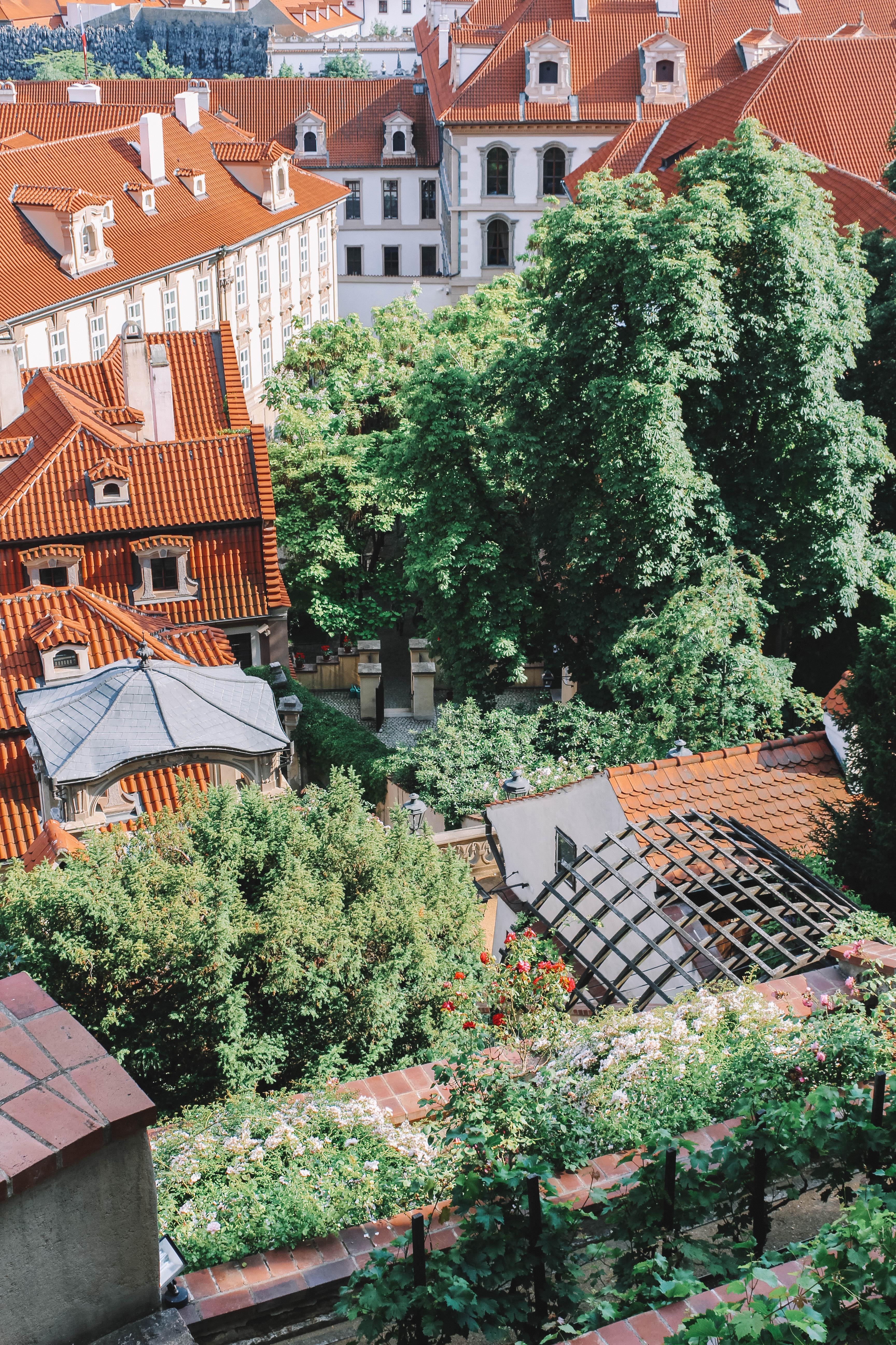 Gardens of the Pražský hrad